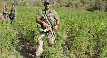 The Ron Paul Institute for Peace and Prosperity : The Drug War Is