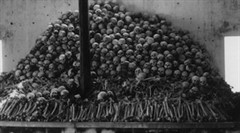Pol Pot Bodies